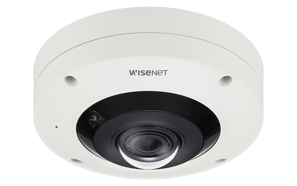 fisheye cameras